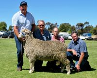 150043 sold to CJ Barnes & Sons, Wilmington. 150043 son of JC&S 130242. L to R Joe Dahlitz, Colin Barnes, Grant Barnes, Gary West. Burra 2016