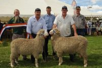 2014 Winning Pairs at Burra - Photo Source Rural Press